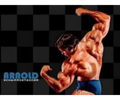 http://www.supplement4gems.com/biocore-hybrid/